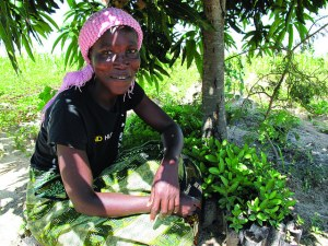 The benefits of the initiative go beyond land restoration and include economic and livelihood benefits. Photo: World Agroforestry Centre