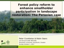 Forest policy reform to enhance smallholder participation in landscape restoration: The Peruvian case