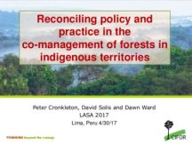 Reconciling policy and practice in the co-management of forests in indigenous territories