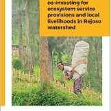 A business case: co-investing for ecosystem service provisions and local livelihoods in Rejoso watershed