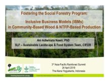 Fostering the social forestry program: Inclusive business models (IBMs) in community-based wood and NTFP-based production