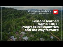 Lessons learned from REDD+: progress in 8 countries and the way forward