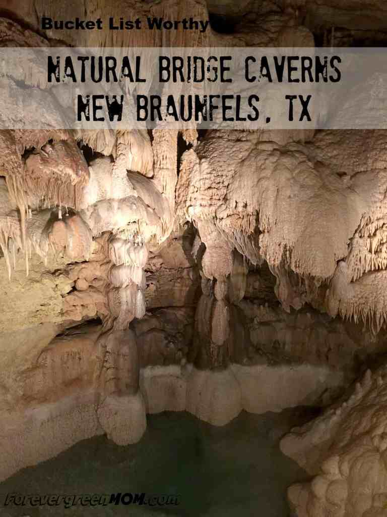 Natural_Bridge_Caverns_New_Braunfels_Texas