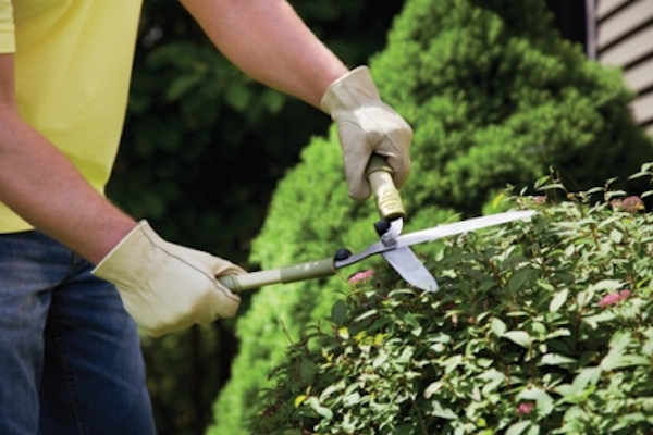 The First Time Home Owner\u0027s Guide To Yard Work