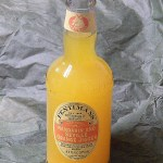 Fentimans Botanically Brewed Mandarin and Seville Orange Jigger
