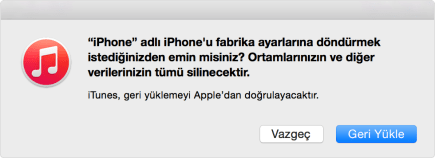 Apple format atma