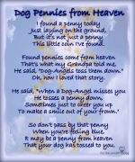 Dog Pennies From Heaven Poem