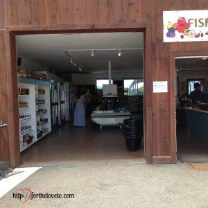 Fishkill farm 9