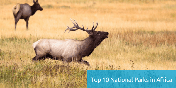 List of Top 10 National Parks in Africa