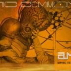 amber12_banner3w