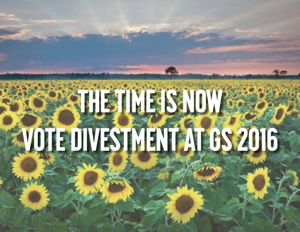 The time is now - sunflowers and text
