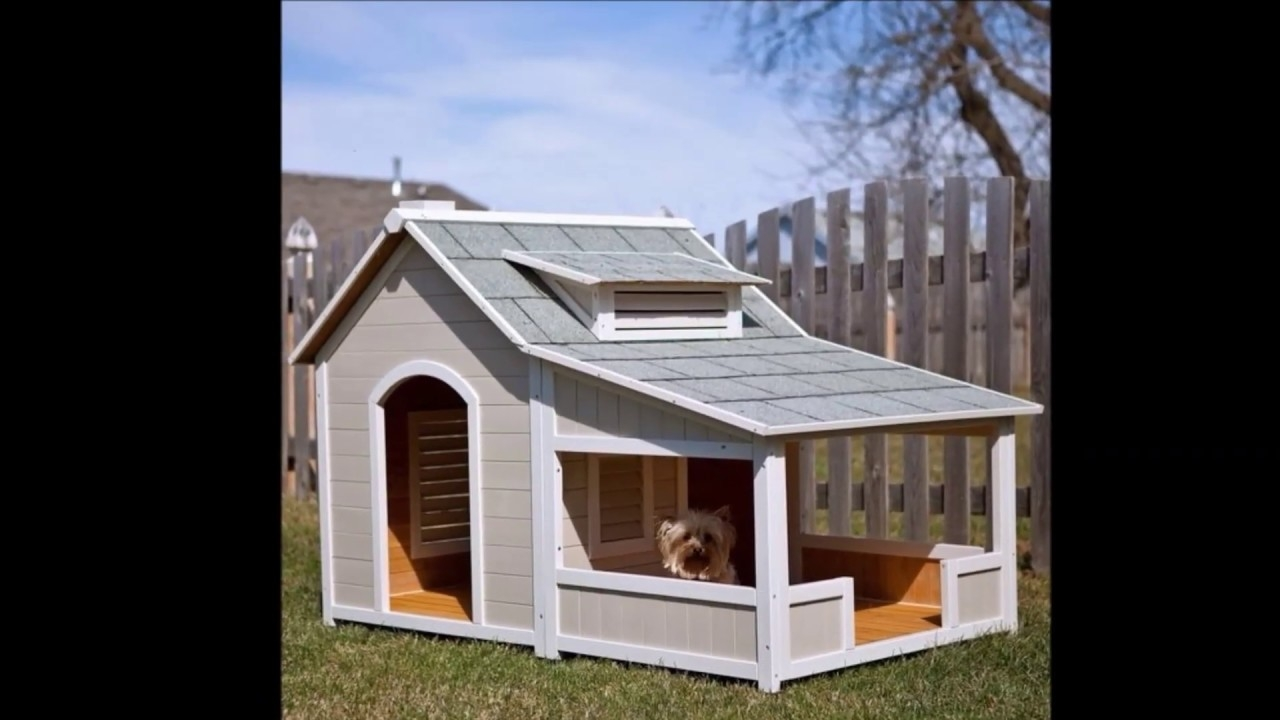 Dog House Furniture Ideas On Foter