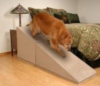 Dog Ramps For Tall Beds - Foter