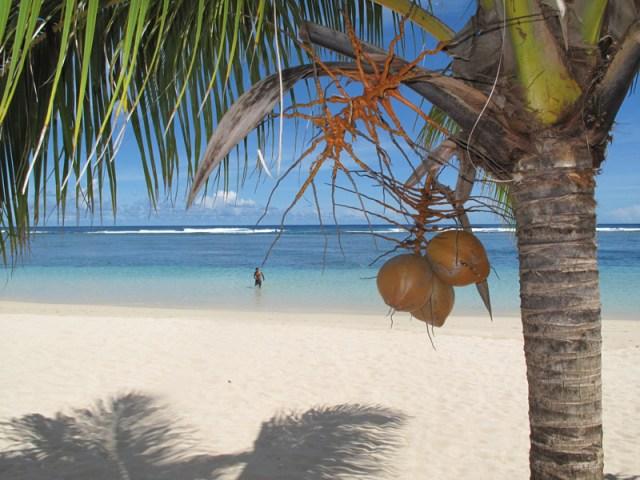 Острова Самоа отзыв