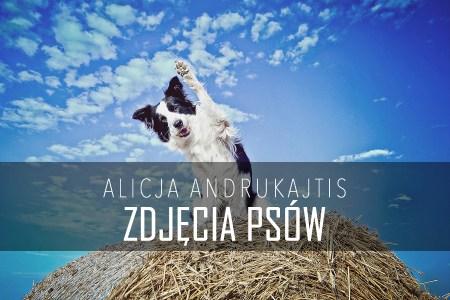 Alicja Andukajtis jak robic zdjecia psow