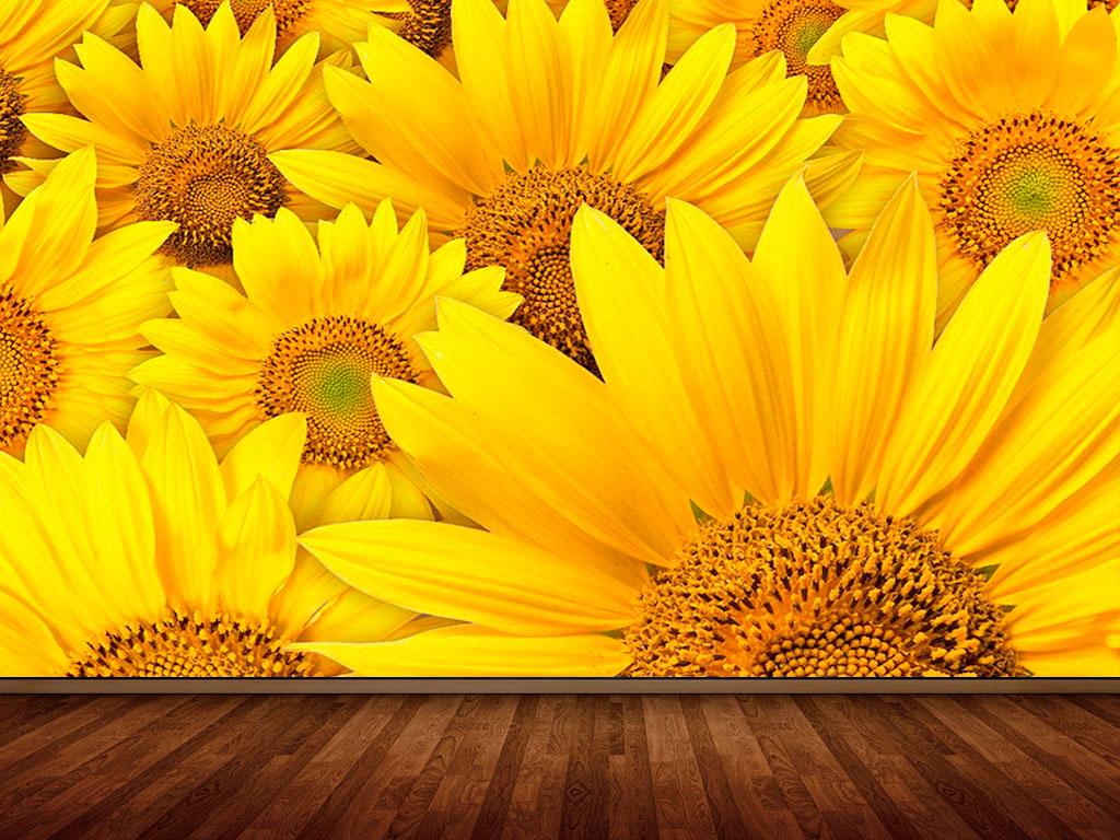 3d Sunflower Wallpaper Fotomural Decorativo Campo De Girasoles Fotomurales