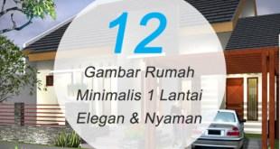 12 Gambar Rumah Minimalis 1 Lantai Elegan dan Nyaman