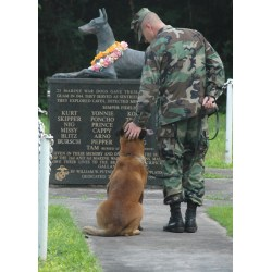 Examplary Where Are Military Dog Jobs Located Four Legged Siers What Is Est Military Rank Ever Achieved By A Dog What Is Est Military Rank Reached By A Dog bark post What Is The Highest Military Rank Achieved By A Dog