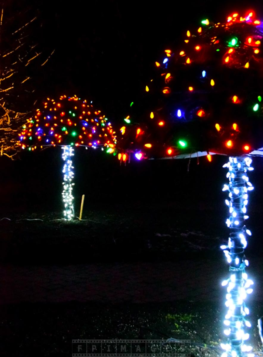 Christmas Led Lights Canada Enjoy Christmas Lights Holiday Decorations At Saint Andrews Nb