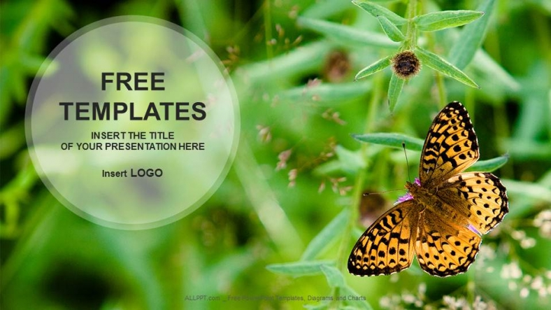 Butterfly on Flower-Nature PowerPoint Templates