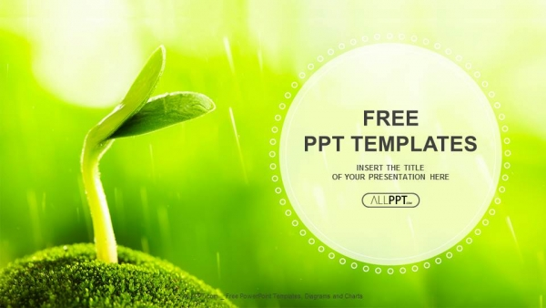 Young sprout in springtime-Nature PowerPoint Templates - nature powerpoint
