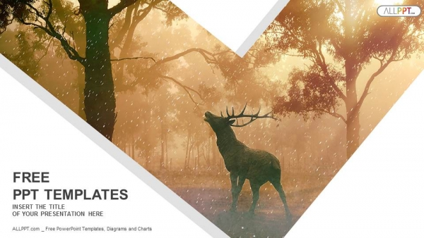 Fall Deer And Farm Scene Wallpaper Border Wild Forest Landscape Of A Red Deer In The Mist Powerpoint