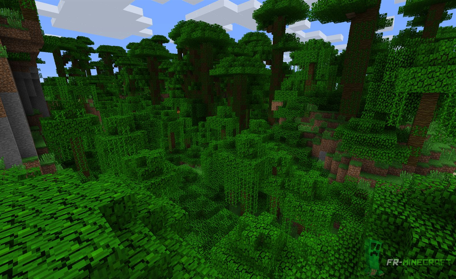 Top Couleur Minecraft Biome Jungle