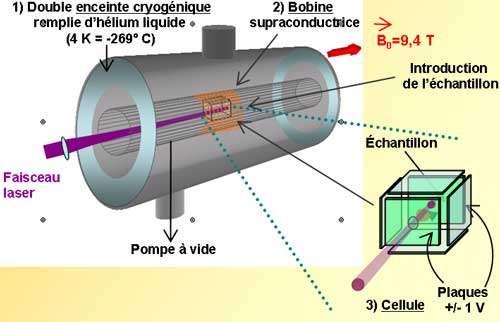 competence spectrometrie de masse cv