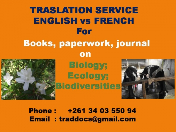 service traduction cv en anglais
