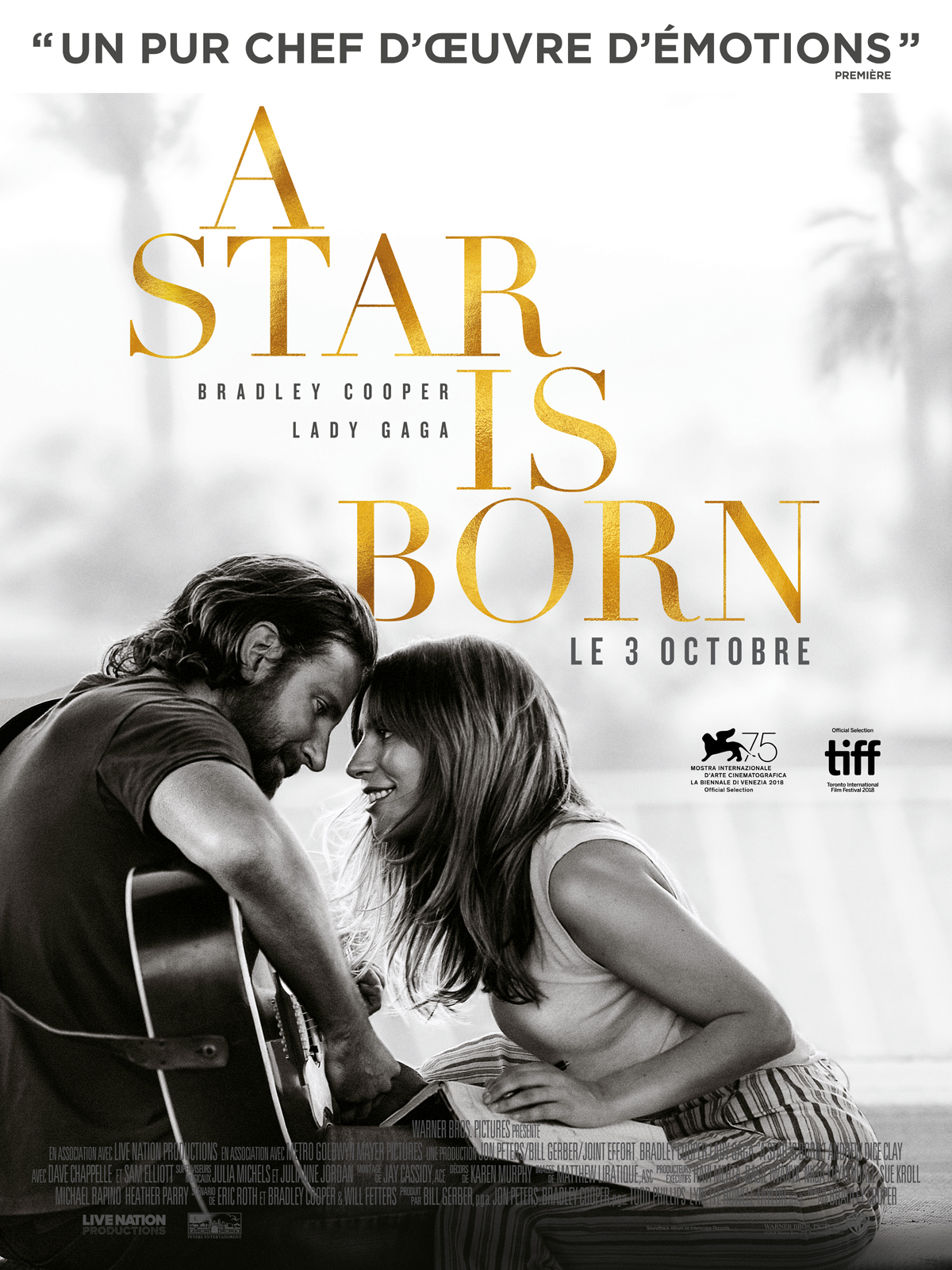 A Star Is Born Truefrench TS