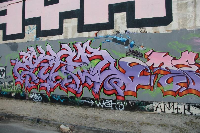 graffiti Dijon - la nuit tous les rats sont gris izi (5)