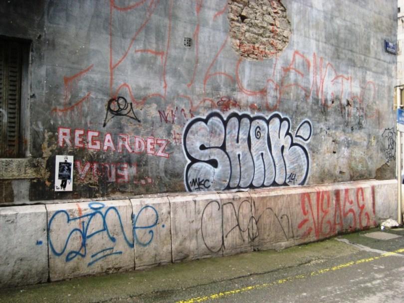 besancon-fevrier 2014 graffiti-shak (2)