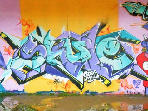 besancon, jam graffiti octobre 2014 SKULE