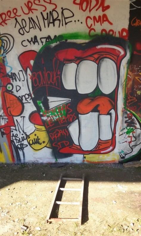 graffiti - octobre 2015 besancon arènes (4)