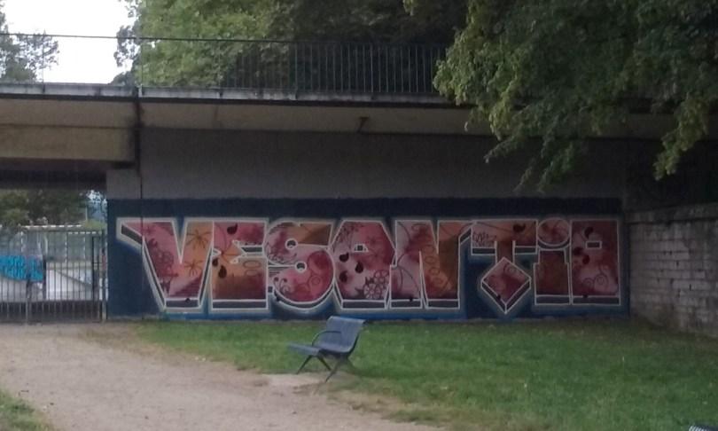 vesontio - graffiti besancon 2016 (1)