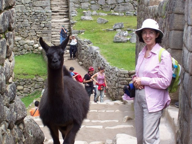 Jean beside a Llama on a walkway at Machu Picchu, Urubamba Province, Peru
