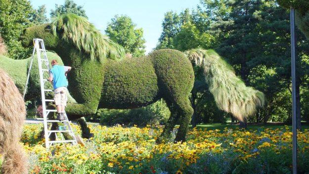 Gardener trims horse topiary at Mosaiculture 2013 at Montreal Botancial Garden, Montreal, Quebec, Canada