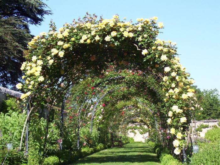 Garden Arbor - Chateau de la Bourdaisiere Castle - France