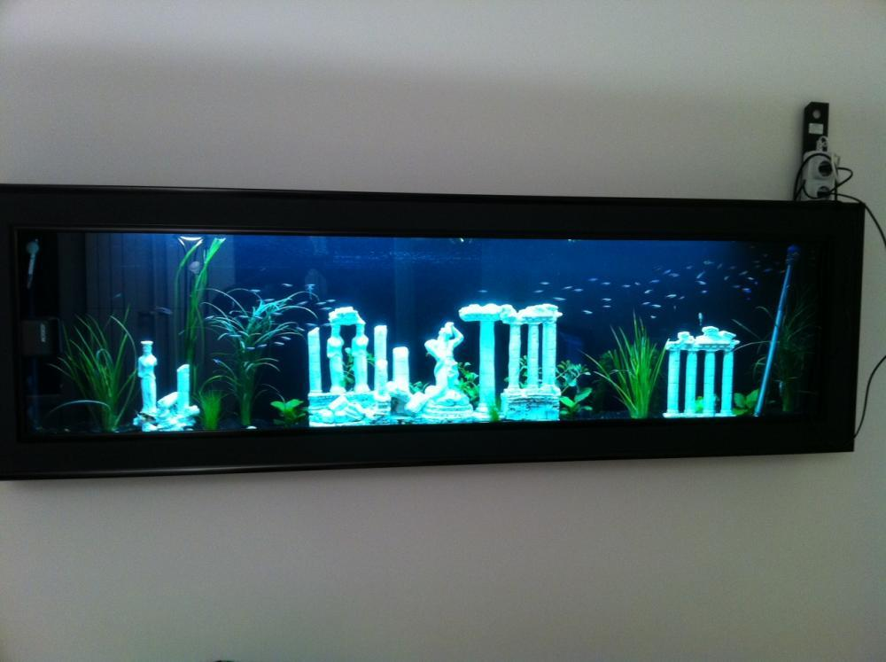 Fournitures Bureau Professionnel Troc Echange Aquarium Mural Aquaplasma 200cm Se Fix Au Mur