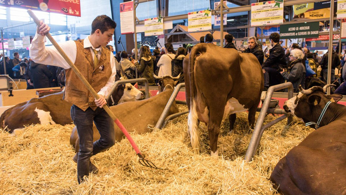 Le Salon De L Agriculture A Paris Direct Sia 2018 Le Salon International De L Agriculture De