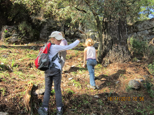 Hiking - Kids Leading the Way