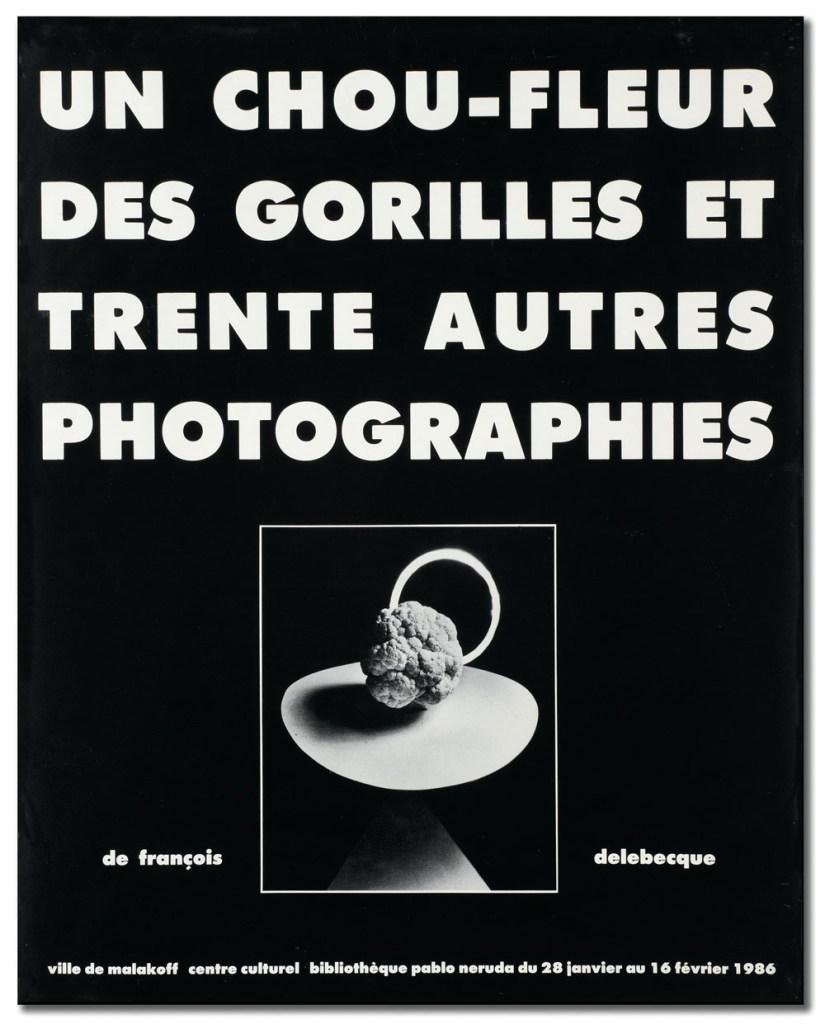 """François Delebecque, Exposition """"Un chou-fleur des gorilles et trente autres photographies"""""""