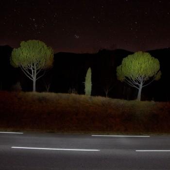 Trois arbres sur un  talus en bord de route de nuit à la montagne