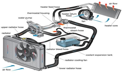 car-cooling-system-diagram Frank Donnini Mechanical Repairs 03