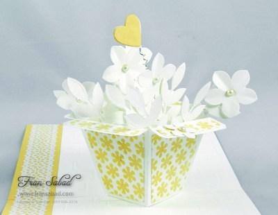 PIU Flower Pot Pop Stand 02 detail inside