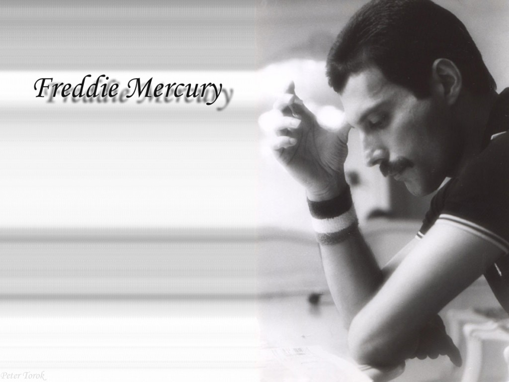 Che Quotes Wallpaper Desktop Freddie Freddie Mercury Fanclub