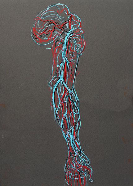 Arm Vessels, 2009, by Fred Hatt