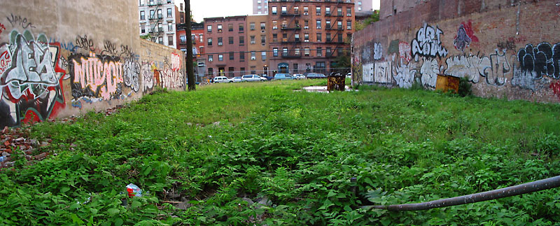 Vacant Lot, 2002, photo by Fred Hatt