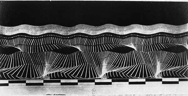 Geometric Chronophotograph of the Man in the Black Suit, 1883, photo by Etienne-Jules Marey