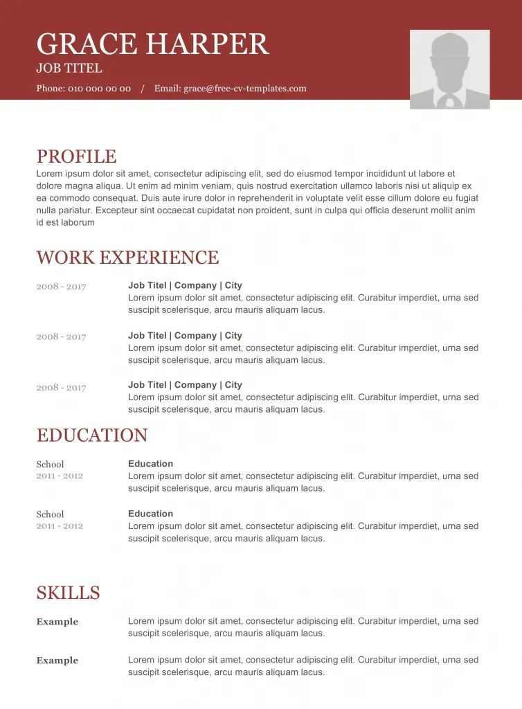 application cv template